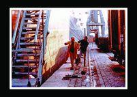 Premier Ete - Photo Couleur 17