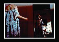 Premier Ete - Photo Couleur 24